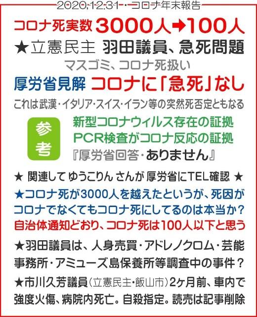 f:id:nsugi031224:20210109075700j:image