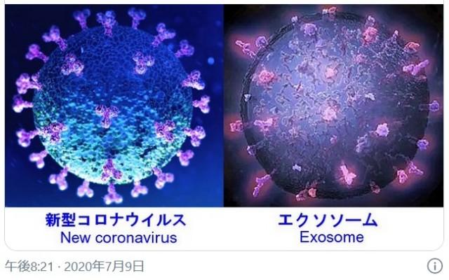 f:id:nsugi031224:20210301091435j:image