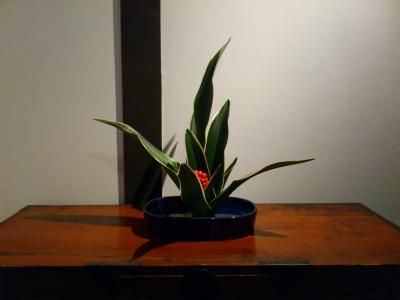 f:id:ntadashi2:20121228191906j:image