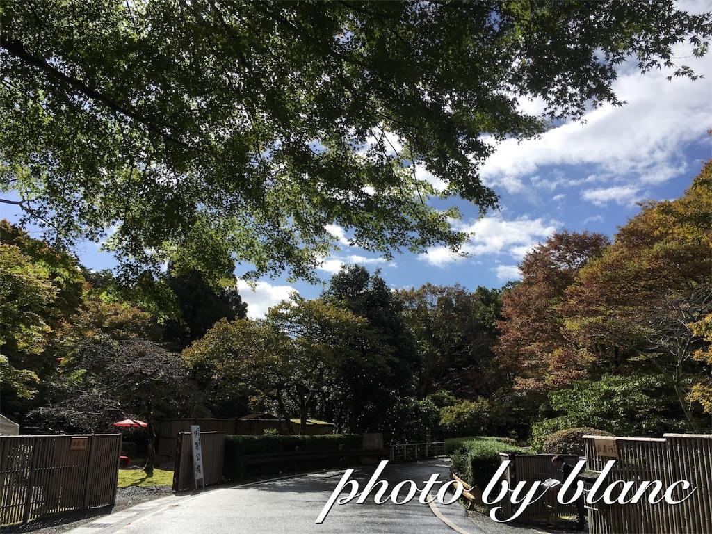 f:id:nuage_blanc:20161029193219j:image