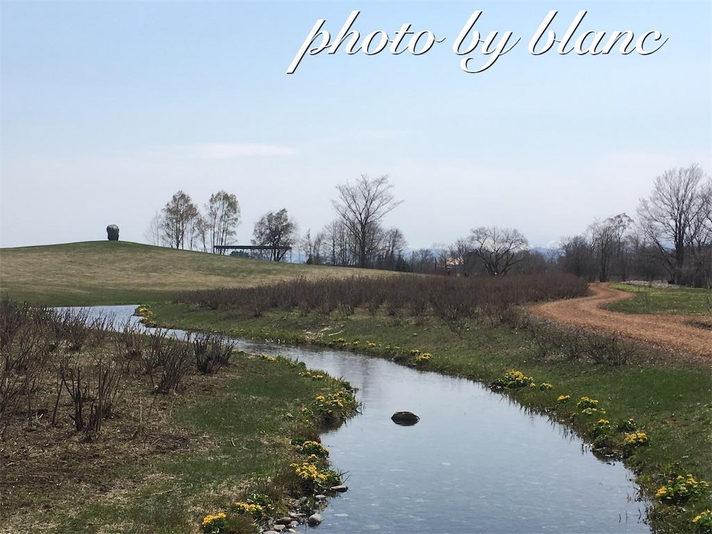 f:id:nuage_blanc:20170430141057j:image