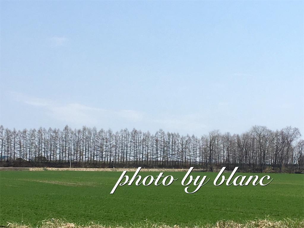 f:id:nuage_blanc:20170430141730j:image