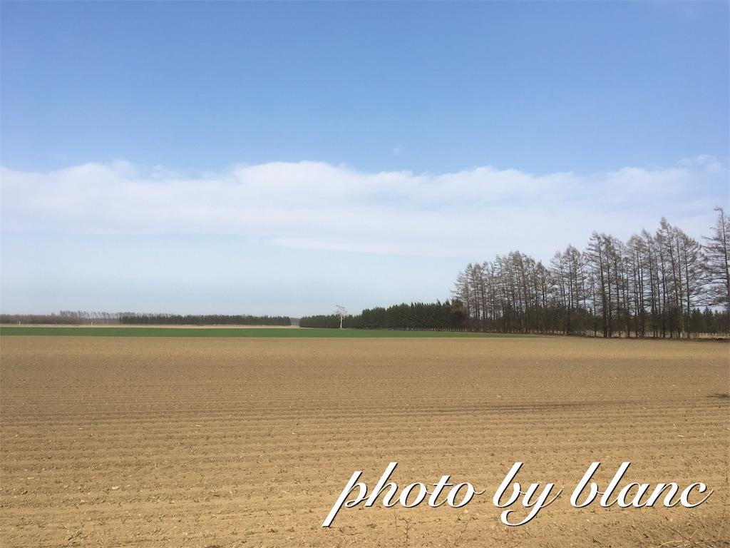 f:id:nuage_blanc:20170430144235j:image