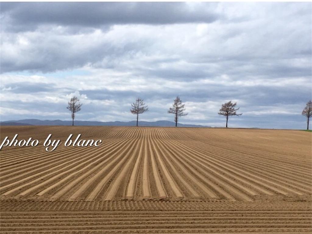 f:id:nuage_blanc:20170502073907j:image