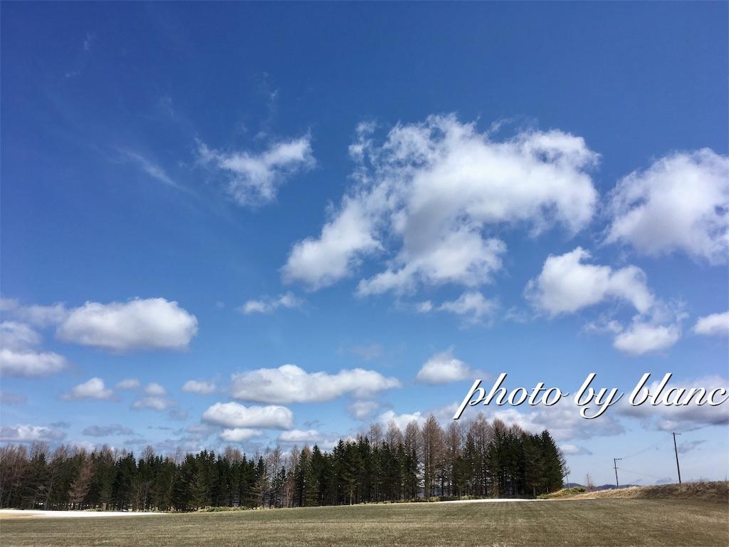 f:id:nuage_blanc:20170502131035j:image