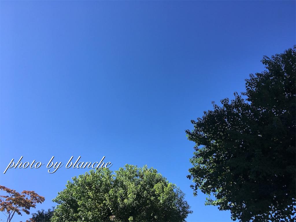 f:id:nuage_blanc:20171004193745j:image