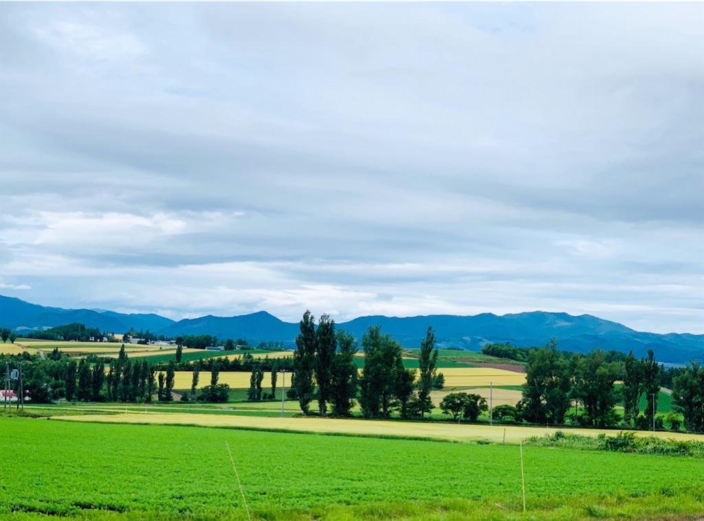 f:id:nuage_blanc:20200808214447j:image