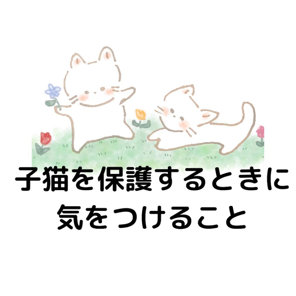 f:id:nuinuinyanko:20210525194846p:image