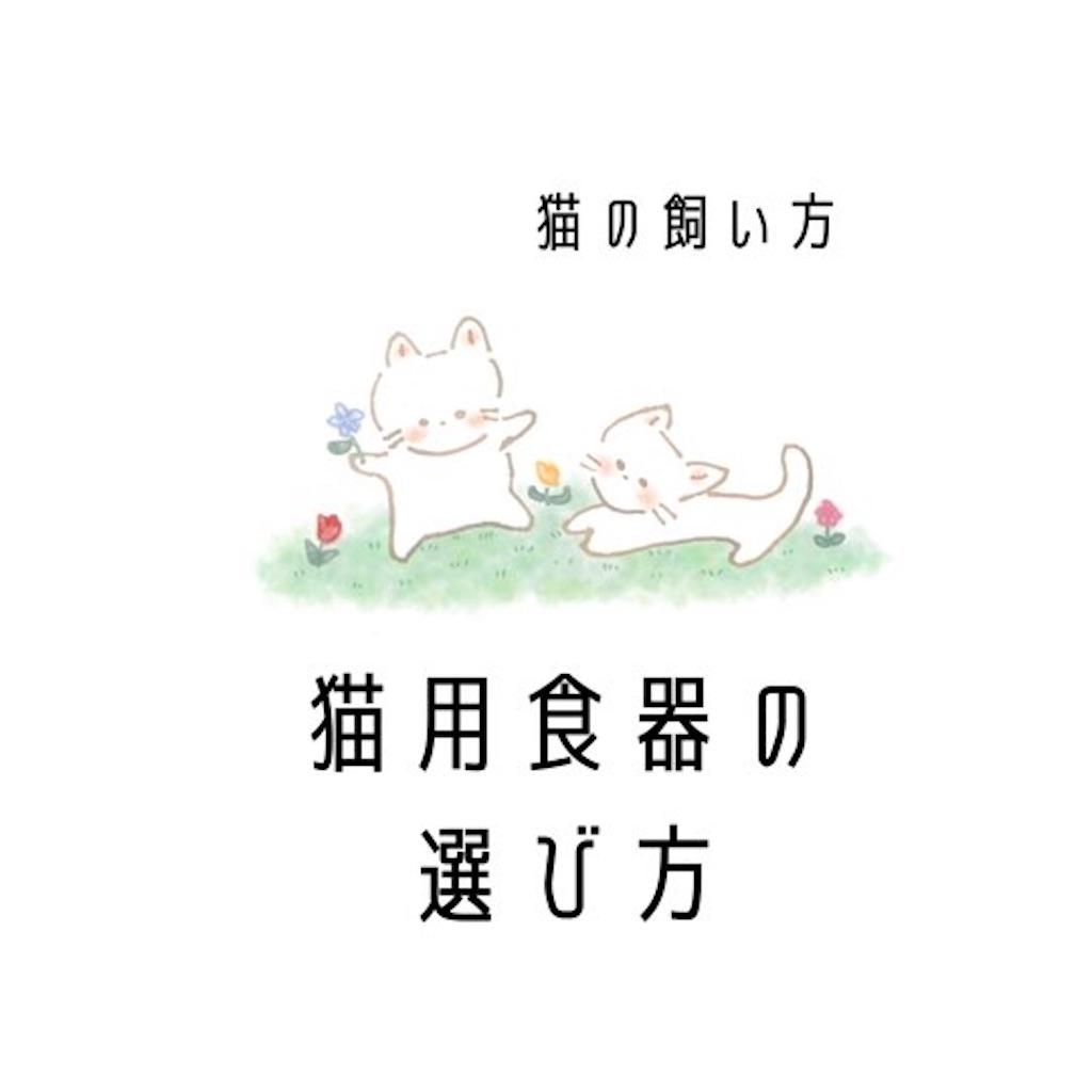 f:id:nuinuinyanko:20210601104820j:image