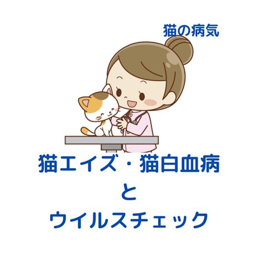f:id:nuinuinyanko:20210611213252j:image