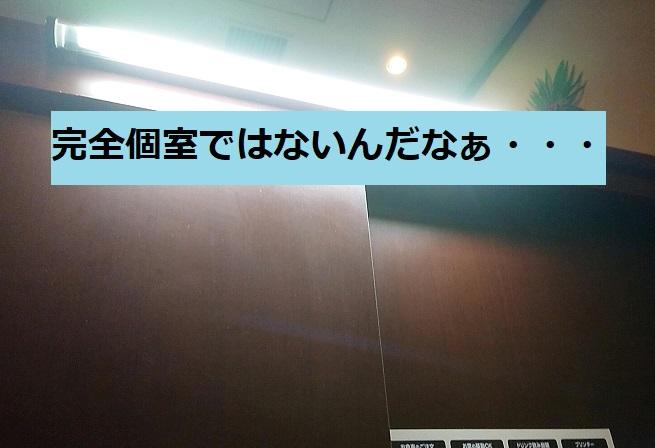 f:id:nukoshogun:20190115014749j:plain
