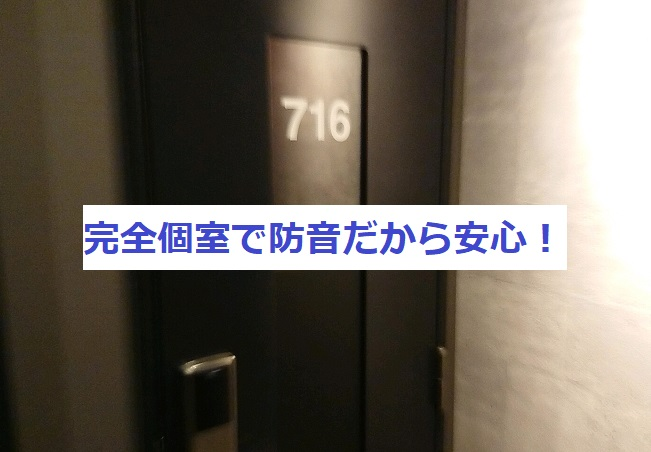 f:id:nukoshogun:20190119053722j:plain