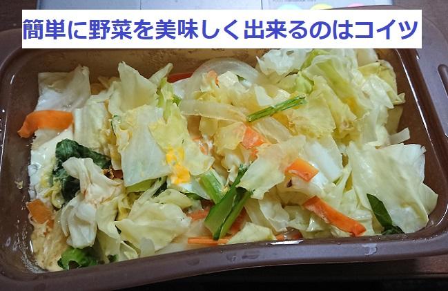 f:id:nukoshogun:20190204200541j:plain