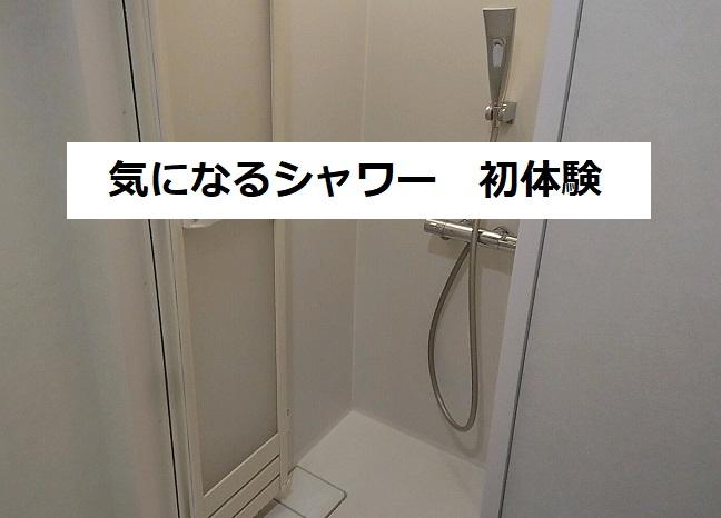 f:id:nukoshogun:20190216021135j:plain
