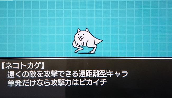 f:id:nukoshogun:20190301201416j:plain