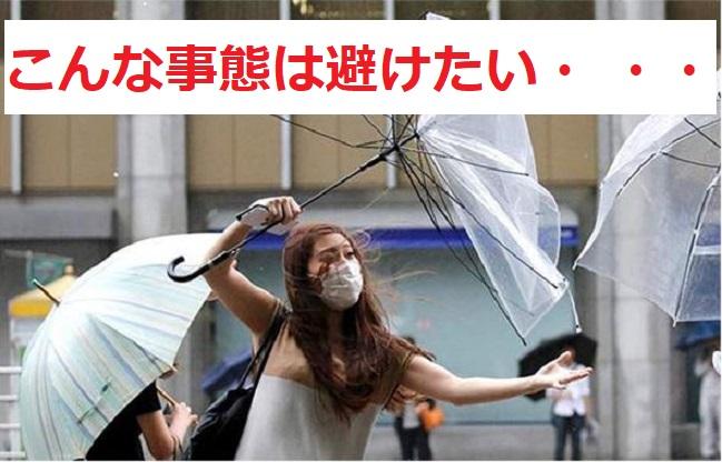 f:id:nukoshogun:20190403205707j:plain