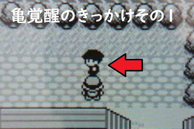 f:id:nukoshogun:20190615204801j:plain