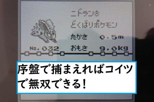 f:id:nukoshogun:20190619185035j:plain