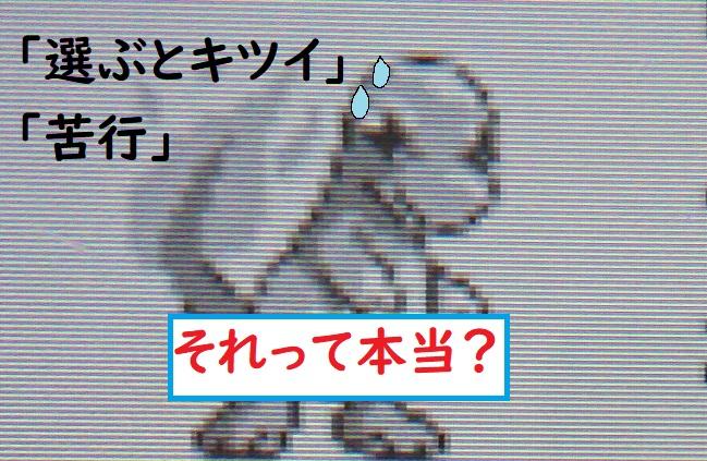 f:id:nukoshogun:20190727203857j:plain