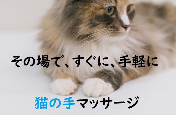 f:id:nukoshogun:20190921010231j:plain