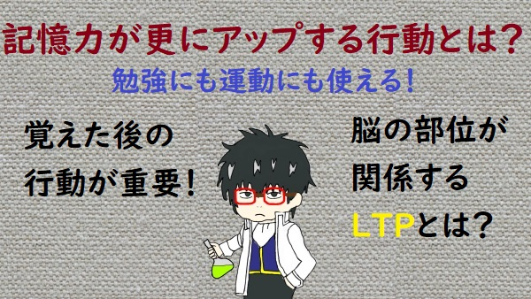 f:id:nukoshogun:20200229175254j:plain
