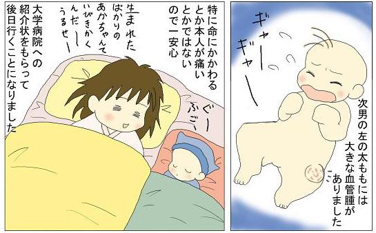 f:id:nukota_nuko:20200402183721j:plain