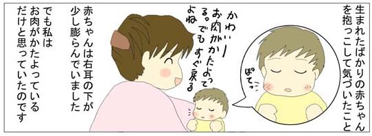 f:id:nukota_nuko:20200406184904j:plain