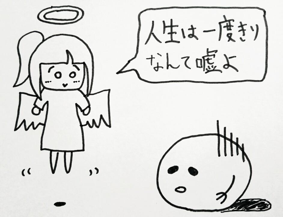 f:id:nukoyamanuko:20161219184343j:plain