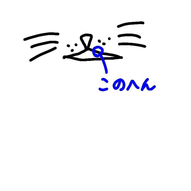 f:id:numan0s0k0:20210118162903j:plain