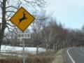 [道路標識][鹿飛び出し注意]