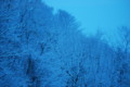 [171212山降雪]