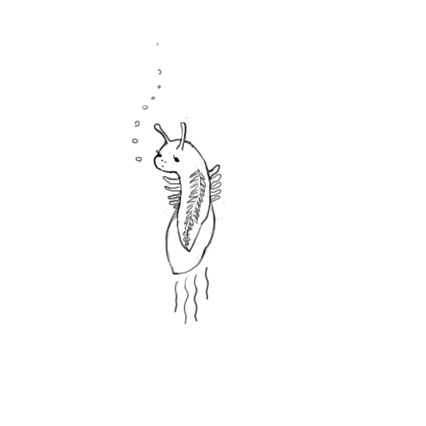 f:id:nunakawa:20150629194338j:image