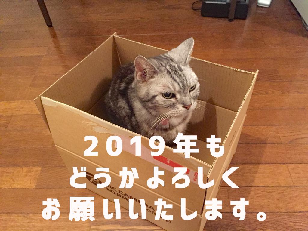 f:id:nununi:20190101125518p:plain