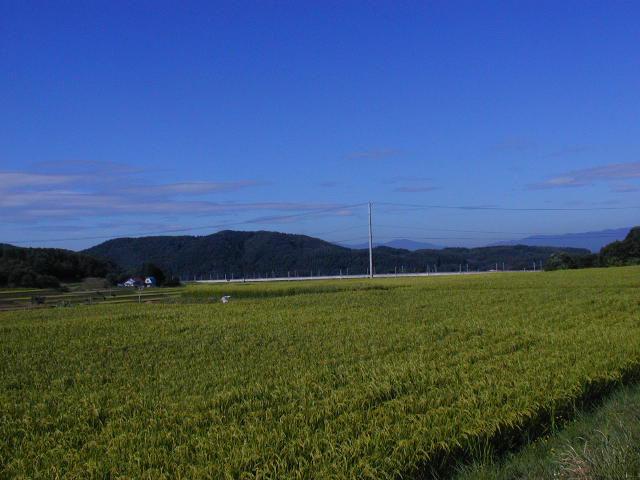 花巻の田園風景
