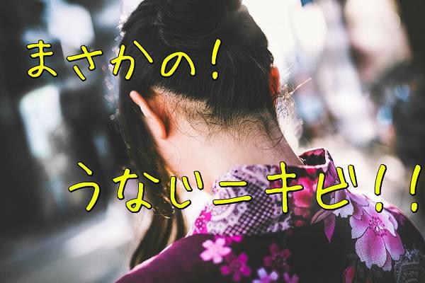 f:id:nurahikaru:20150216143224j:plain