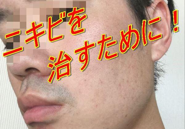 f:id:nurahikaru:20170519192542j:plain