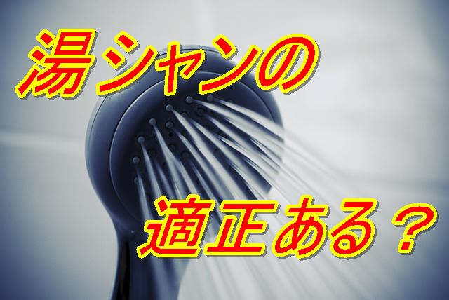 f:id:nurahikaru:20170603171238j:plain