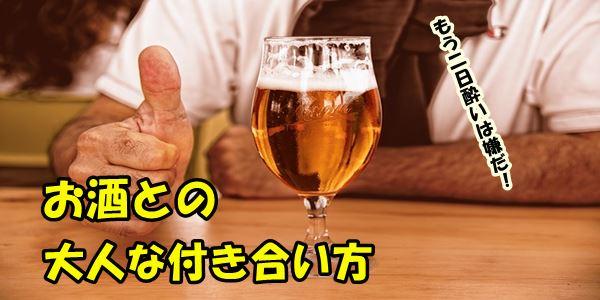 f:id:nurahikaru:20190108201314j:plain