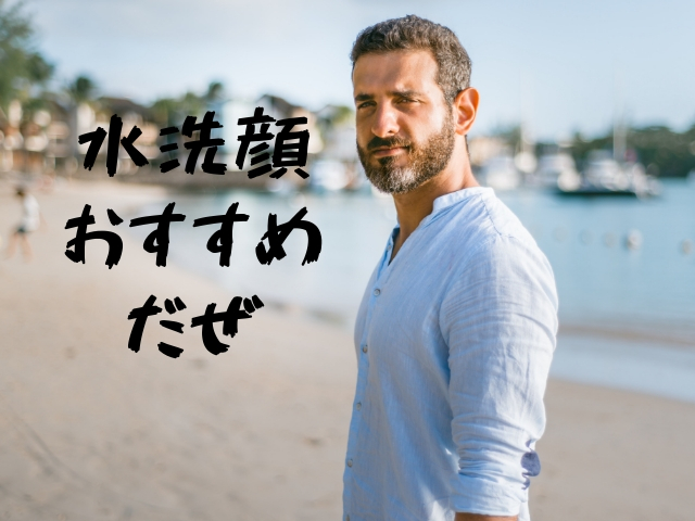 f:id:nurahikaru:20190127231805j:plain