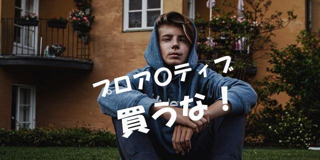 f:id:nurahikaru:20190131230027j:plain