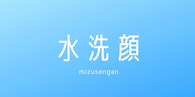 f:id:nurahikaru:20190207215712j:plain