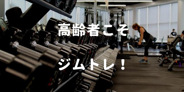 f:id:nurahikaru:20190208093935j:plain