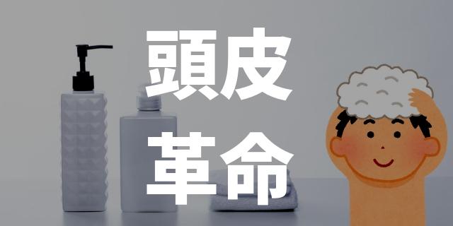 f:id:nurahikaru:20190305173911j:plain