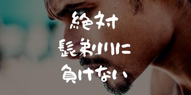 f:id:nurahikaru:20190310134749j:plain