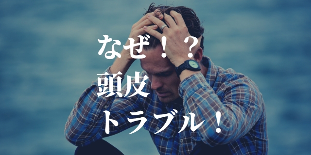 f:id:nurahikaru:20190329225754j:plain