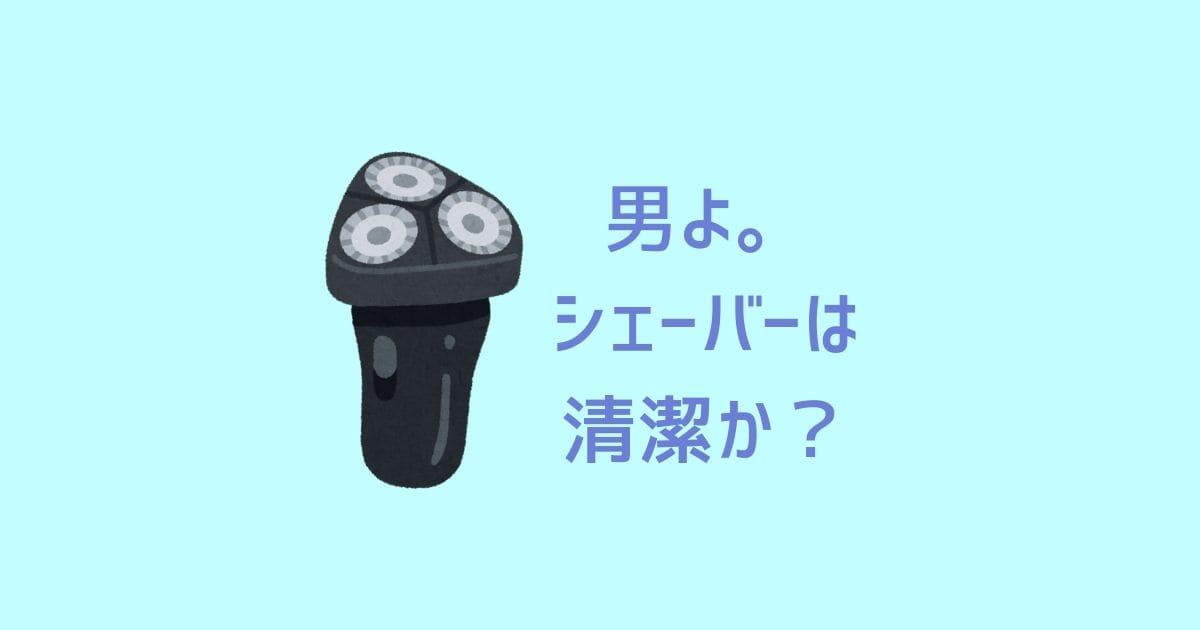 f:id:nurahikaru:20190714205518j:plain