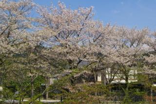 f:id:nurikabe-majin:20090412143201j:image