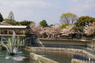 f:id:nurikabe-majin:20090412143253j:image