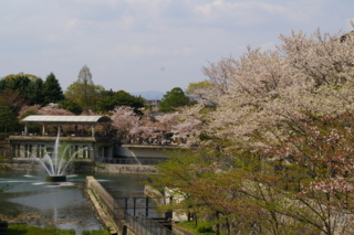 f:id:nurikabe-majin:20090412143959j:image