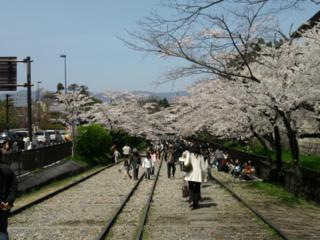 f:id:nurikabe-majin:20100404120246j:image